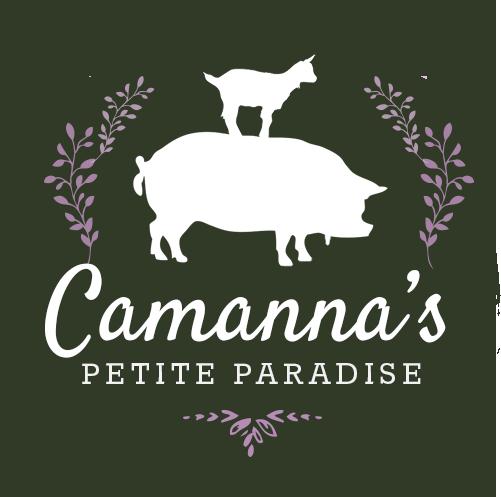 Camanna